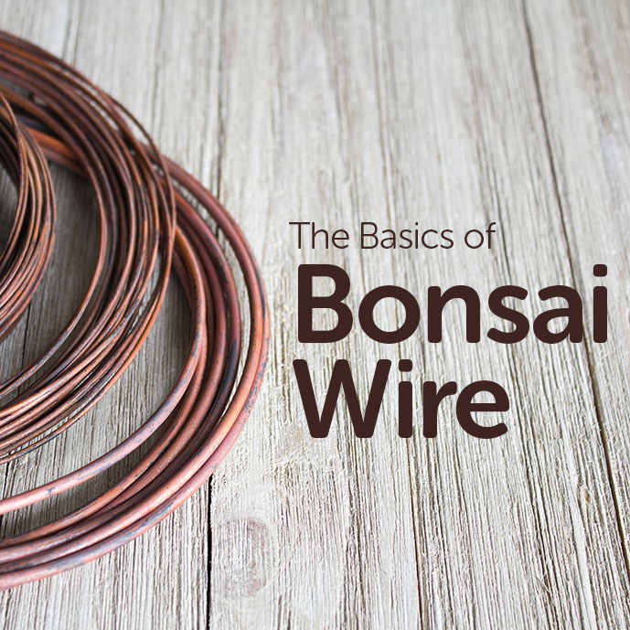 Basics of Bonsai Wire