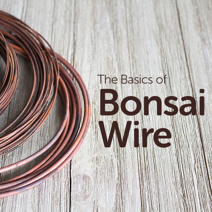 Basics of Bonsai Wire