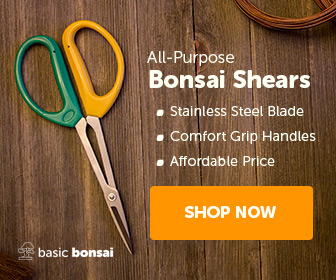 All-Purpose Bonsai Shears