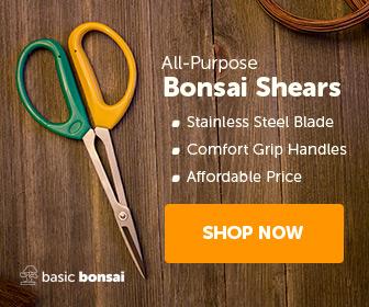 All-Purpose Bonsai Shears